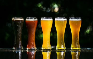6 Novos Associados Cervejeiros de Portugal